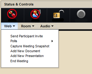 Meeting Controller Web Controls Screenshot