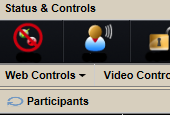 Meeting Controller Status & Controls